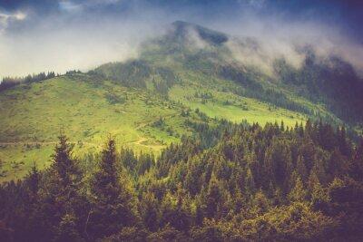 Плакат Горный пейзаж и леса вершины покрыты туманом. Драматический пасмурное небо.