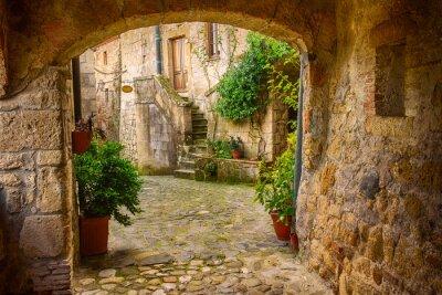 Плакат Узкие улицы средневекового города Sorano туф с аркой, зелеными растениями и булыжник, путешествия Италия фона