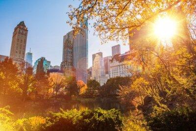 Плакат Центральный парк Нью-Йорк