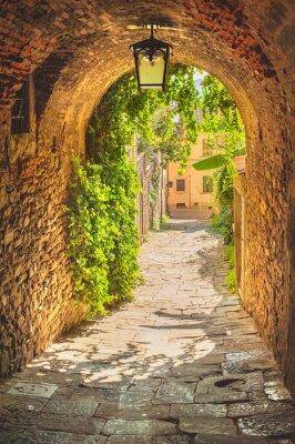 Плакат Старинные улочки средневекового тосканского городка зелень.