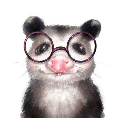 Плакат Opossum illustration. Cute animal portrait isolated on white
