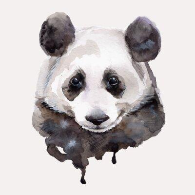 Плакат Panda.Watercolor иллюстрации Вектор