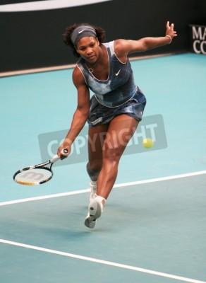 Плакат ПАРИЖ - ФЕВРАЛЬ 11: США Серена Уильямс возвращает мяч на открытых GDF SUEZ WTA турнира, Пьер де Кубертен стадиона 11 февраля 2009 года в Париже, Франция.