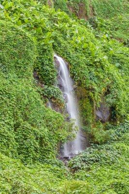 Плакат paroi humide и др verdoyante, Анс де Каскады, île де ла Реюньон