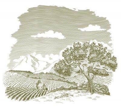 Плакат Перо и чернила рисунок поле фермы с горы на заднем плане.
