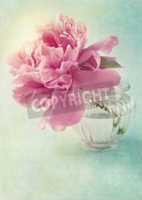Плакат Пион цветок в вазе