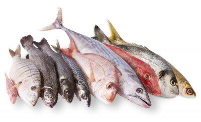 Плакат pescato Mediterraneo в Fondo Bianco