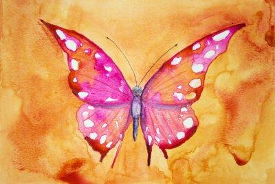 Плакат Розовый бабочка с оранжевом фоне. Техника прикладывая дает эффект мягкой фокусировки благодаря измененному шероховатости поверхности бумаги.