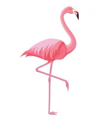 Плакат Pink flamingo on a white background. Vector illustration.
