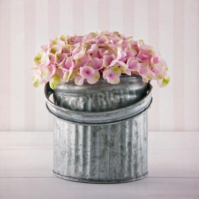 Плакат Розовые цветы гортензии в металлическое ведро на урожай полосатый фон