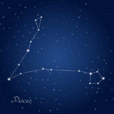 Плакат Рыбы знак зодиака созвездие на звездное ночное небо