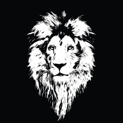 Плакат Портрет красивый лев, лев в темноте