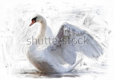 Плакат белый эскиз лебедя / масляная окраска