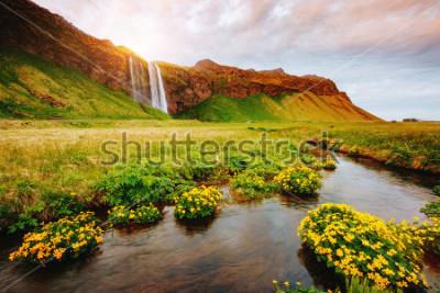 Плакат Прекрасный вид на цветное зеленое поле в солнечном свете. Драматическая и великолепная сцена. Популярная достопримечательность. Селйяландсфосс, Исландия, Европ