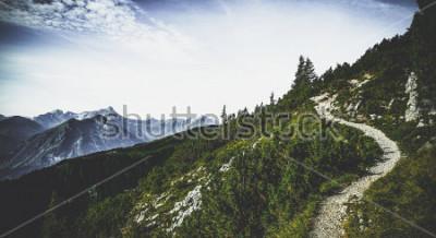 Плакат Походная тропа через лесистые альпийские вершины под летним солнцем с видом на отдаленные вершины и хребты в живописном австрийском пейзаже