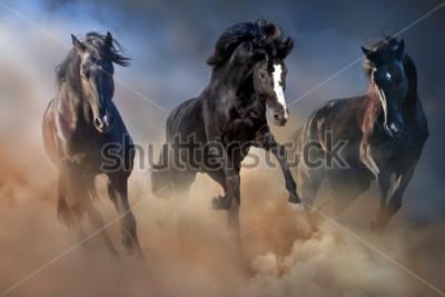 Плакат Черные жеребцы бегут галопом в пустынной пыли на фоне драматического неба