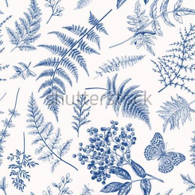 Плакат Цветочный фон в винтажном стиле. Различные листья папоротника, ягоды и бабочки. Векторные ботанические иллюстрации. Синий.