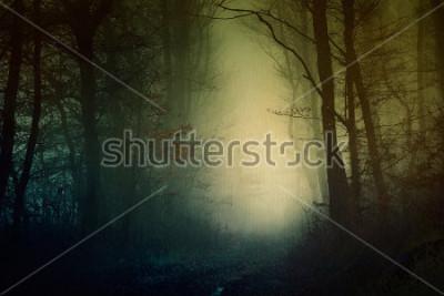 Плакат Мистические обои темный лес