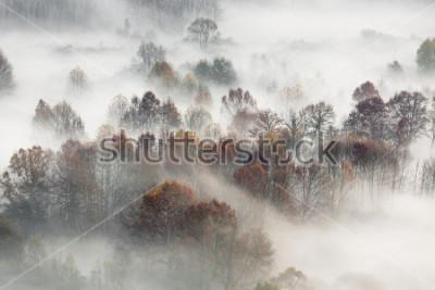 Плакат Осенний пейзаж, Италия