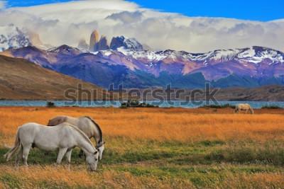 Плакат Озеро Лагуна Азул в горах. На берегу озера пасутся лошади. Впечатляющий пейзаж в национальном парке Торрес дель Пайне, Чили