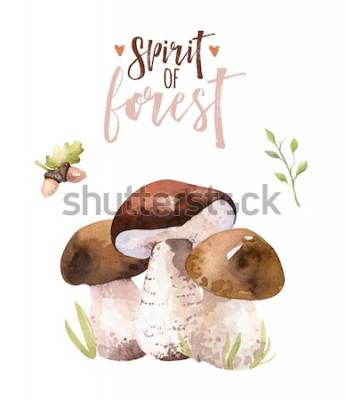 Плакат Установленные, лесные грибы акварели богемские, полесье изолировали иллюстрацию мухомора плаката, мухомор, подосиновик, украшение гриба подосиновика апельсин-крышки.