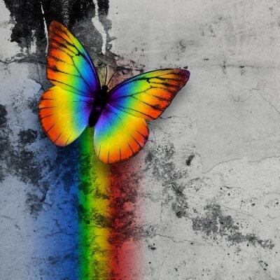 Плакат радуги бабочка
