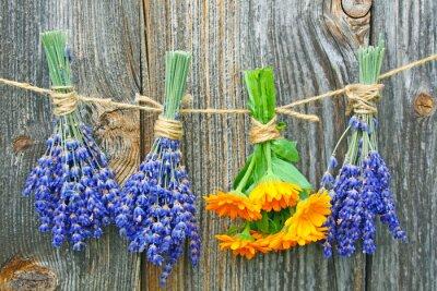 Плакат ringelblume унд Lavendel