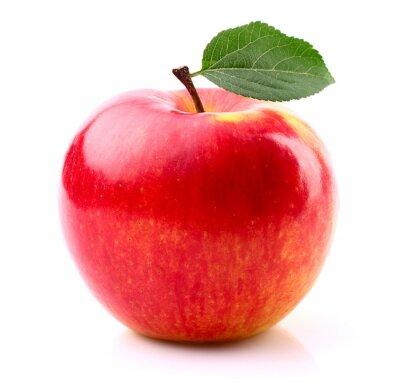 Плакат Спелые яблоки с листа