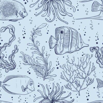 Плакат Бесшовные шаблон с тропических рыб, морских растений и водорослей. Урожай рисованной векторные иллюстрации морской жизни. Дизайн для пляже летом, украшения, печати, заполнения шаблона, веб поверхность