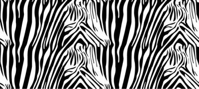 Плакат Бесшовные зебры
