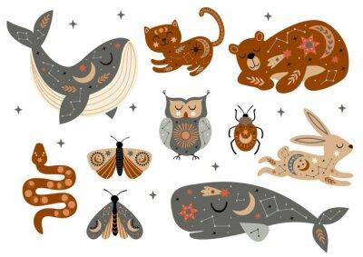 Плакат set of isolated celestial animals