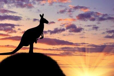 Плакат Силуэт кенгуру с ребенком