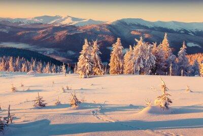Плакат Солнечное утро восход солнца в зимний горы. Ретро стиль.