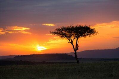 Плакат Закат в Национальном парке Серенгети, Танзания, Африка