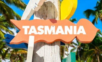 Плакат Тасмания приветствовать знак с пальмами