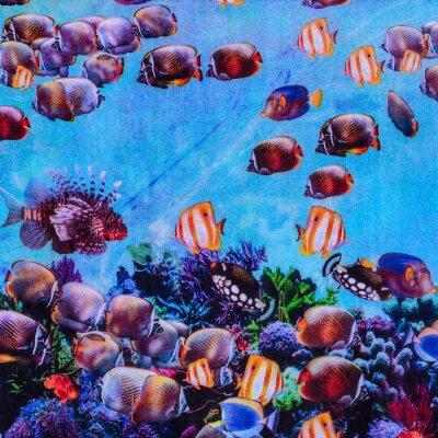 Плакат texture of print fabric striped aquarium