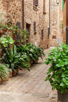 Плакат Улицы старого итальянского города Пиенца, Тоскана