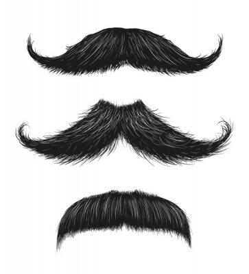 Плакат Three Mustache Set