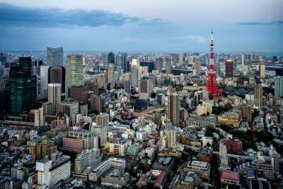 Плакат Токио вид на город