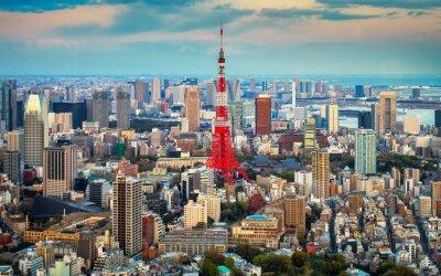 Плакат Токио вид на город виден на горизонте