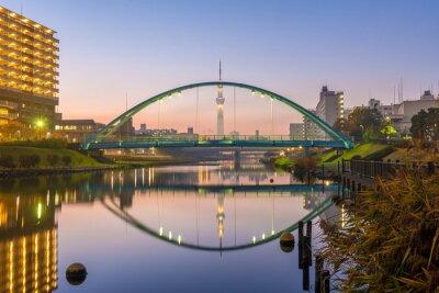 Плакат Tokyo Skytree и красочный мост в трапезу