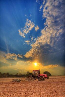 Плакат Трактор в поле