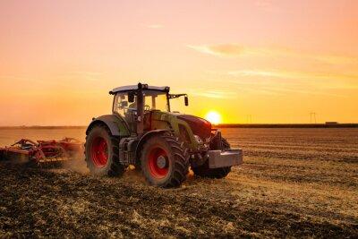 Плакат Трактор на поле ячменя и закат.