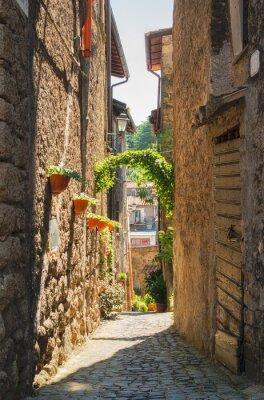 Плакат Традиционные итальянские дома