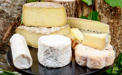 Плакат лоток с различными французских сыров