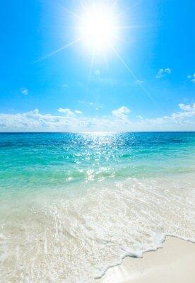 Плакат тропическое море