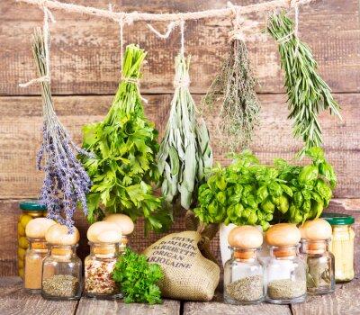 Плакат различные свежие и сушеные травы