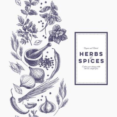 Плакат Вектор фон с рисованной трав и специй.