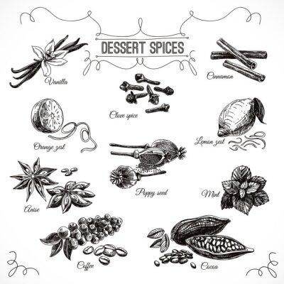 Плакат Vector hand drawn set with Dessert Spices.