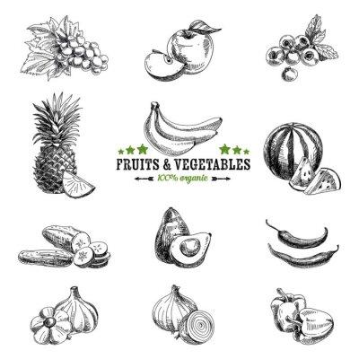 Плакат Векторный набор фруктов и овощей.